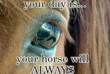 paarden en texten