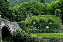 Cottages entitled to me