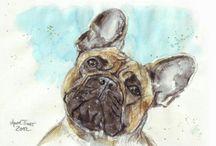 Portraits Dogs