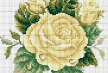 fiori geale