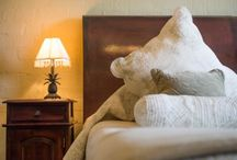 Fordoun Accommodation / Fordoun Hotel, located in Nottingham Road, the Midlands comprises twenty two luxurious, individually appointed suites with 3 categories of accommodation.