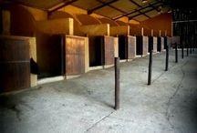 my equestrian yard / equestrian stable yard