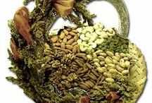 Dry Fruits Exporters India