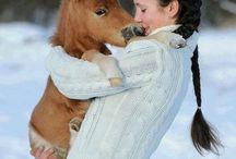 Horse-Love <3