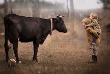 Landelijk leven - The country life