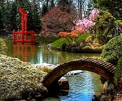 Brooklyn Botanic Garden / One of the prettiest places in the world / by Lou Cesario