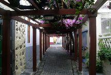 Santa Brígida. Las Palmas. Gran Canaria. España. / La Villa de Santa Brígida es un municipio español perteneciente a la provincia de Las Palmas y situado en el sector noreste de la isla de Gran Canaria, a una altitud de entre los 400 y los 680 metros y a unos 15 km de la capital de la isla, Las Palmas de Gran Canaria.