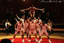MR Circus