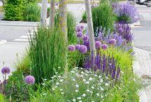 Kvetoucí zahrady