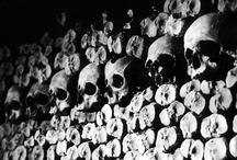 Skulls / by Sheila Conrad