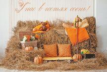 студия осень