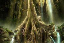 fantastická příroda