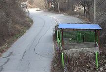쓰레기투기 CCTV