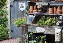 pots , planting & pleasure