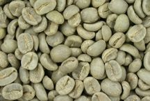 Green Coffee Bean Extract Helps Speed Weight Loss Up To 2 Pounds A Week