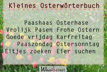 Niederländische Sprache / Niederländisch lernen | Tipps und Tricks im Alltag | Niederlande erleben