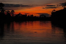 Amazon / by Lindblad Expeditions