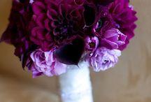 Wedding Flowers / by Liz Scott