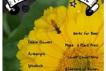Herbal, Medicinal, etc. / by Amy Kleene