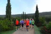 Sport / The sports available at our Tenuta!