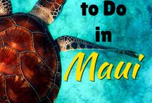 Maui Vacation Tips, Ideas, and More Insider Info / Get ideas for fun things to do on your next Maui vacation! Learn how to save money, find the best activities, and make the most of your vacation!