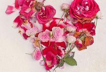 coeurs / dessins, fleurs, love