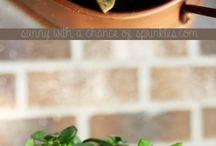 Gardening / by Jessica Trowbridge