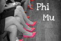 Phi Mu <3 / by Kate Bruens