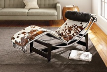 Holy Cowhide! / by Room & Board