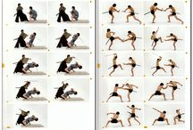 FIGHT POSES