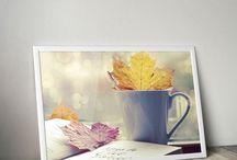 Foto's/afbeeldingen / Hier zie je foto's/afbeeldingen die mij aanspreken. En deze zijn ook terug te zien op www.oogvoordesign.com