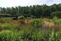 Tuin | Inspiratie / Inspiratie voor de tuin