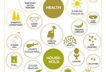101 (and more!) uses for olive oil