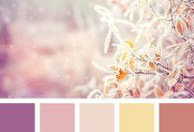 Pallete Color