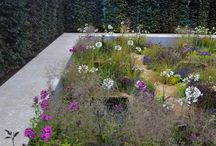 Hampton Court 2014 / The ProLandscaper team went to Hampton Court flower show in 2014! Keep up to date with ProLandscaper news on our Facebook (https://www.facebook.com/prolandscapermagazine) and follow us on Twitter (https://twitter.com/ProLandscaperJW)