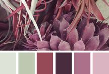 cores para viver