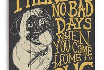 PUG / When you have a Pug, he is your best friend