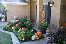 HOME- Outdoor Decor & Gardening