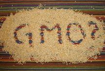 No GMO Gardening