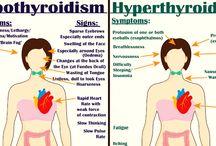 Tiroid Hormones