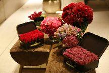 Valentine's Day / Indragostiti de flori