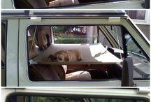 Car sleeping ideas