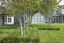 Zahrada Trutnov / Pestrá, soukromá, relaxční, pro děti, pěstování, moderní, hodně květin