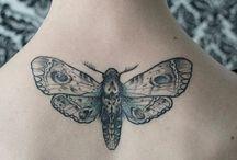 butterfly <3