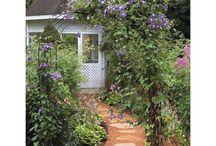 Yard & Garden Ideas