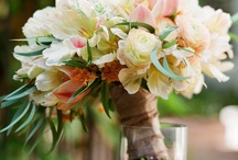 Dream Wedding / by Eleanor Lee