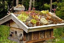 Vogel- und Bienenhaus