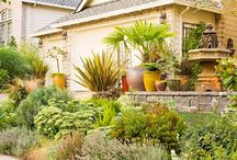 Curb Appeal / Ways to add beautiful curb appeal to homes. / by Angie @Echoes of Laughter