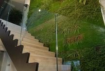 Greenwals & Kruidentuintjes voor het interieur