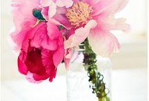 Kukka-aiheisia maalauksia